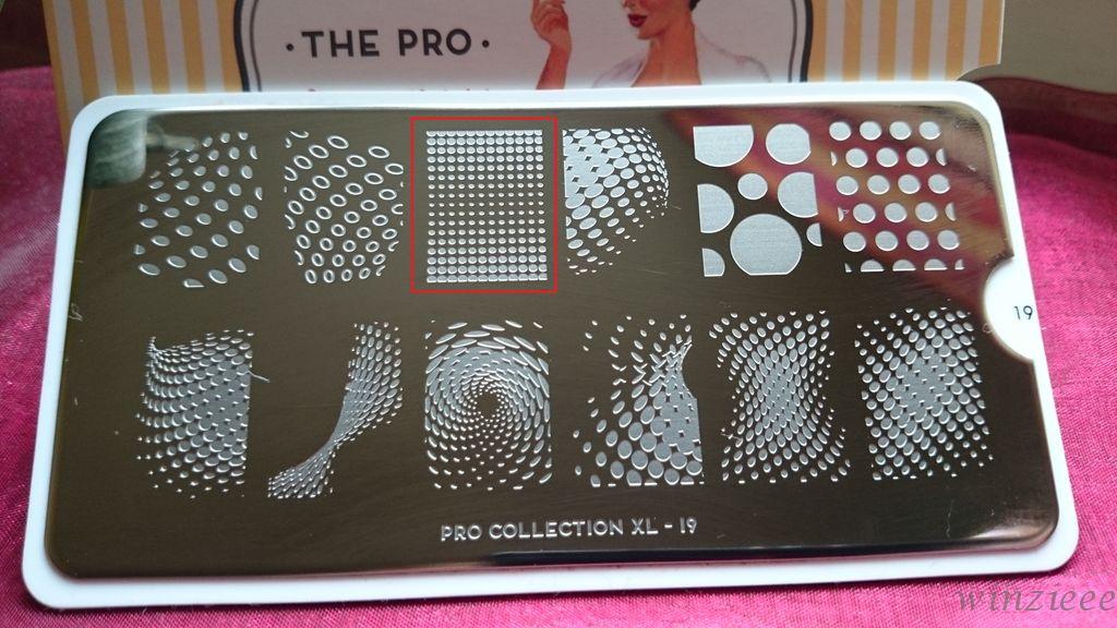 Pro Collection XL 19 MoYou
