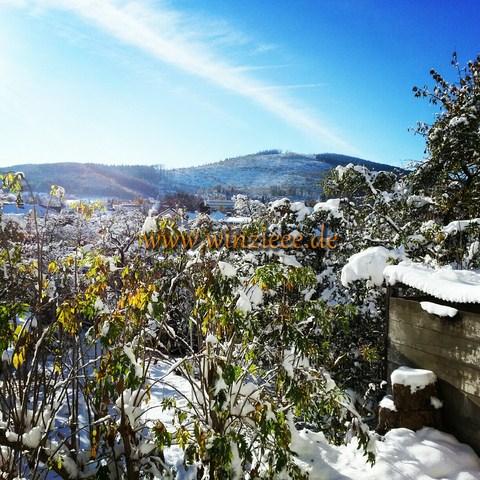 Winter in Thueringen